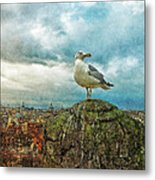 Gull Over Rome Metal Print