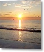 Gulls Dance In The Warmth Of The New Day Metal Print