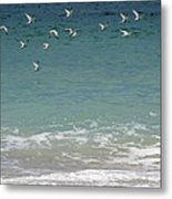 Gulls Flying Over The Ocean Metal Print