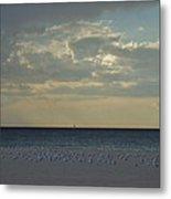 Gulls Waiting For The Storm Metal Print