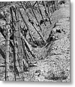 Gully Fence Metal Print