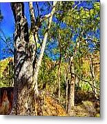 Gum Tree Ridge Metal Print