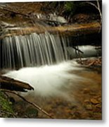 Gurgling Over A Small Log Metal Print