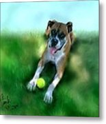 Gus The Rescue Dog Metal Print