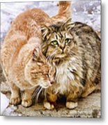Gutter Kitties Five Metal Print