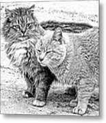 Gutter Kitties Four Metal Print