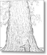 Guy Hugging A Giant Tree And Speaks To It Metal Print
