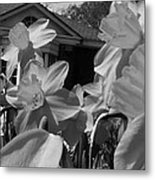 H I Think Its This Way Bw Metal Print