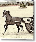 Hackney Pony Cart Metal Print