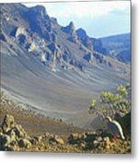 Haleakala Volcano And Chukar Maui Hawaii Metal Print