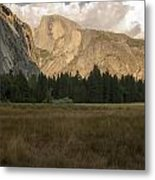 Half Dome And The Yosemite Valley Metal Print