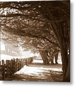 Half Moon Bay Pathway Metal Print