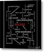 Halifax Nova Scotia Crosswords Red Metal Print