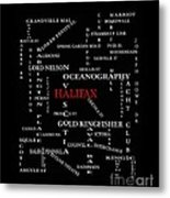 Halifax Nova Scotia Landmarks And Streets Metal Print
