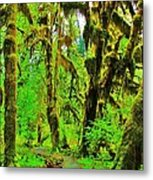 Hall Of Moss Metal Print by Benjamin Yeager