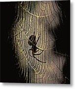 Halloween - Spider Metal Print