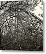 Hammond Bridge Metal Print