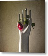 Hand Holding Rose Metal Print by Terry Rowe