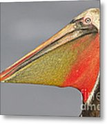 Handsome In Red Metal Print