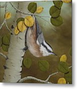 Hanging Around-red Breasted Nuthatch Metal Print