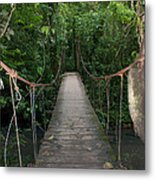 Hanging Bridge Metal Print