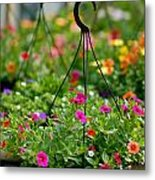 Hanging Flower Baskets Shallow Dof Metal Print