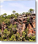 Hanging Forest Metal Print