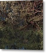 Hanging Garden In Moonlight Metal Print