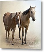 Hanging Out Together Metal Print