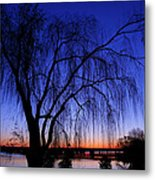 Hanging Tree Sunrise Metal Print
