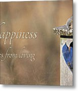 Happiness Comes From Loving Metal Print