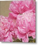 Happiness In Pink Silk Metal Print