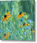 Happiness Is In The Meadows Metal Print