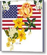 Happy Birthday America 2013 Metal Print by Anne Norskog