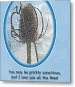 Happy Birthday Greetings - Dried Teasel Thistle Flower Head Metal Print