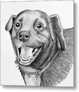 Happy Dawg Metal Print