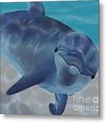 Happy Dolphin Metal Print