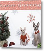 Happy Holidays 105 Metal Print