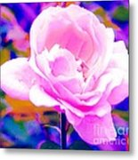 Happy Rose Metal Print
