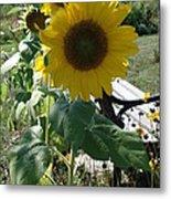 Happy Sunflowers Metal Print