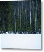 Hard Line Winter Metal Print