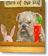 Hare Of The Dog...the Bulldog... Metal Print