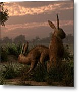 Hares In The Wetlands Metal Print