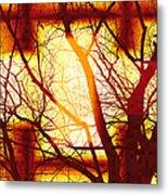 Harmonious Colors - Sunset Metal Print