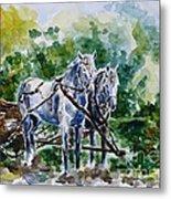 Harnessed Horses Metal Print