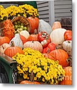 Harvest Display At The Vermont Country Store Metal Print