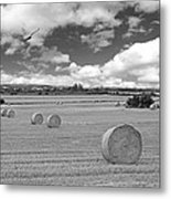Harvest Fly Past Black And White Square Metal Print
