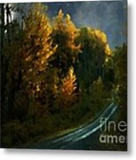 Harvest Moon Another Starry Night Metal Print