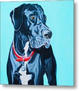 Harvey Metal Print