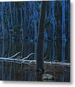 Haunted Forest Metal Print